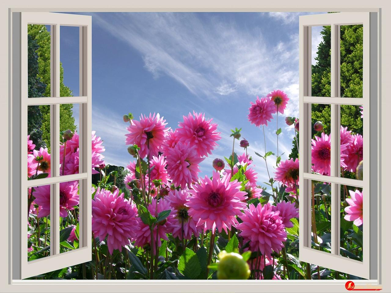 a-beautiful-day-174599_1280